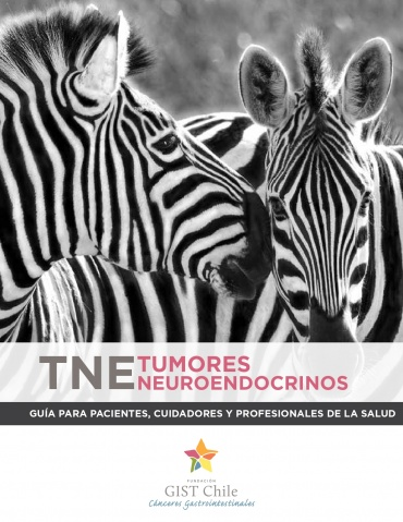 Manual para pacientes con Tumores Neuroendocrinos (TNE)
